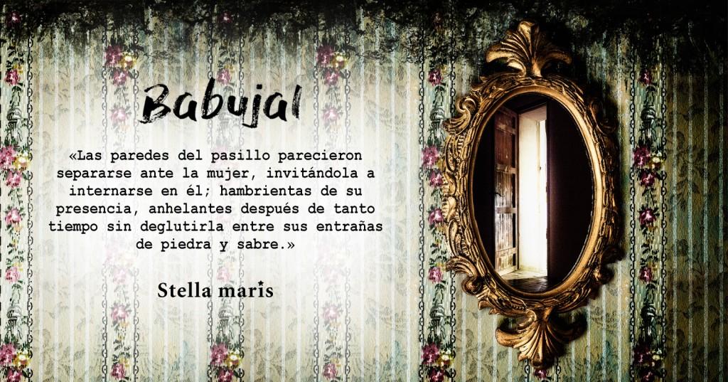 babujal-rrss_espejo